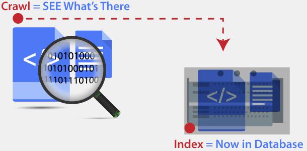 Search Engine Crawl vs Index process