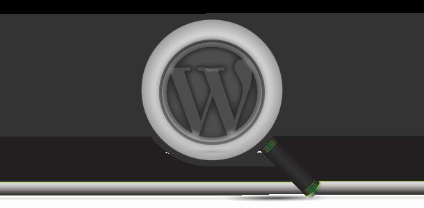 WordPress searched