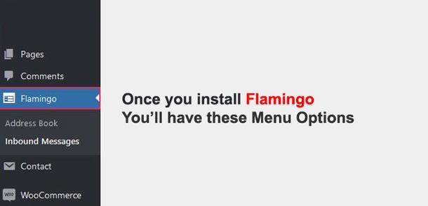 Flamingo Plugin WordPress Menu Options
